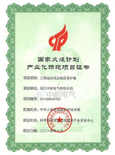 Certificate of national torch plan industrialization demonstration projects