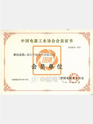 Certificate of China electrical equipment industry association